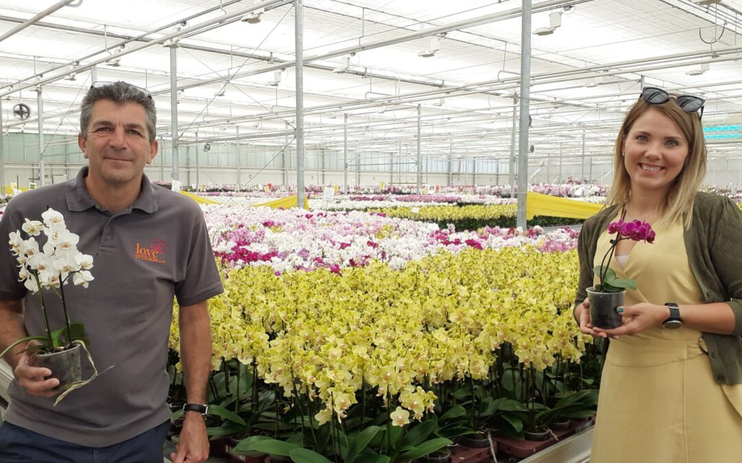 Double H Nurseries Donate Orchids to New Lewis-Manning Hospice Care Premise