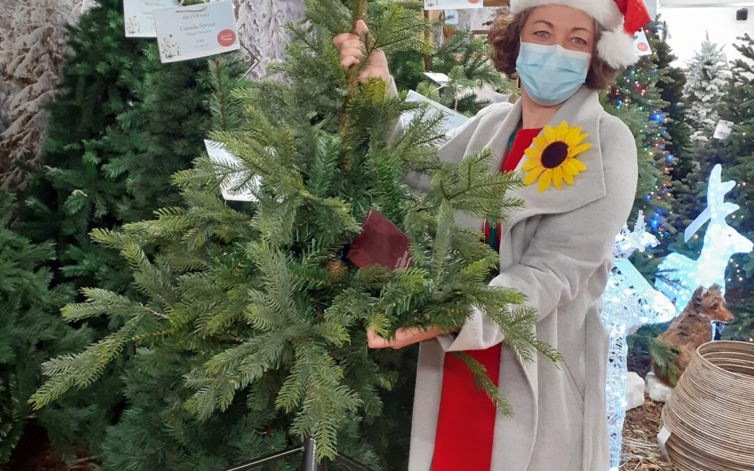 Lewis-Manning Hospice Care Launches Christmas Tree Collection Service!