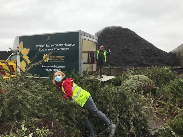 Lewis-Manning Hospice Care recycle 770 Christmas trees, producing 3.5 tonnes of eco mix and compost